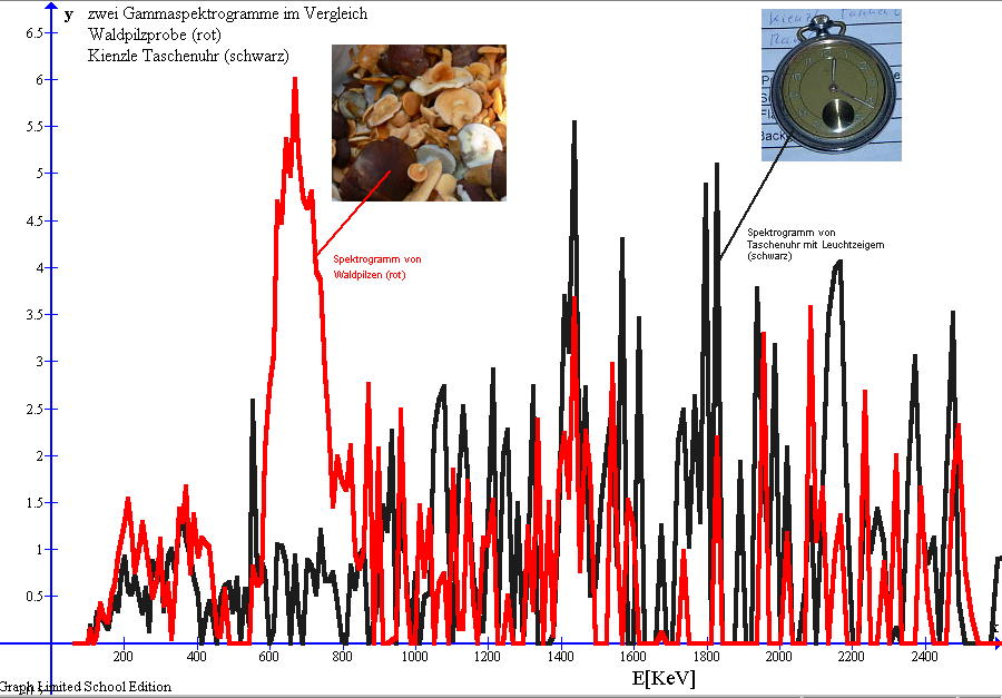 Alte Taschenuhr (Radium Leuchtzeiger) und Waldpilze, zwei Gamma Spektrogramme im Vergleich
