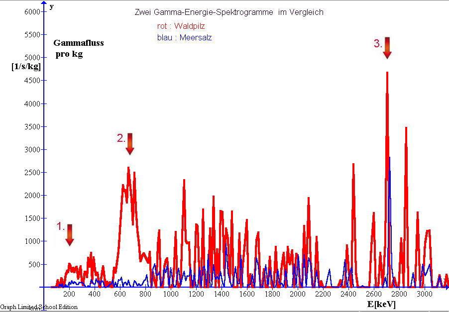 Gamma-Spektrogramm von Waldpilzen im Vergleich mit dem Spektrogramm von Meersalz
